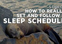 5 tips on how to REALLY set and follow a sleep schedule